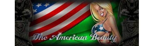 The American Beauty